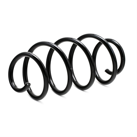 RIDEX Suspension springs VW Front Axle