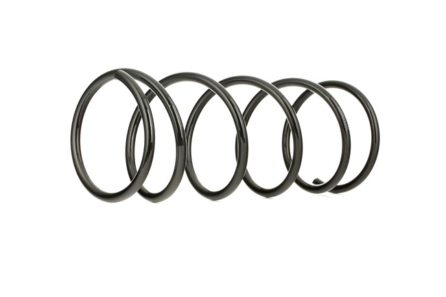 Coil springs RIDEX 8100345 Front Axle