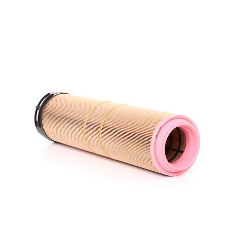 A1248 Luftfilter Filter PURFLUX
