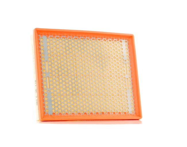 Filtro aria motore MANN-FILTER 961505 Cartuccia filtro