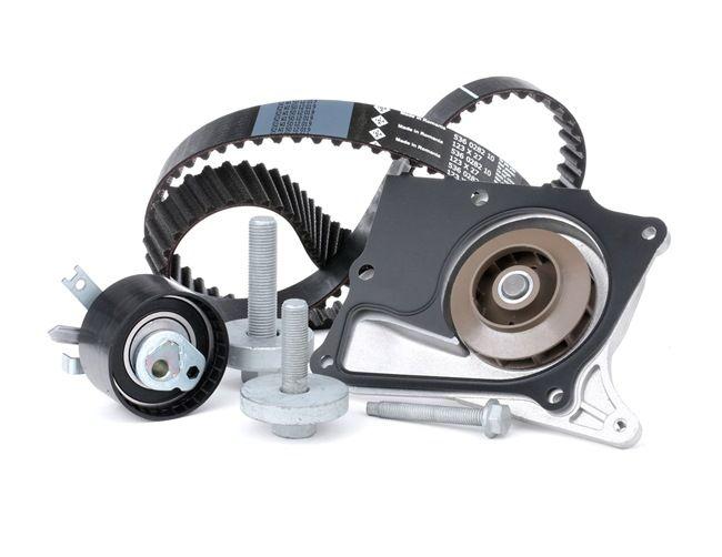 OEM INA 530 0197 32 RENAULT MEGANE Timing belt set