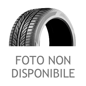 Summer UHP 1 BERLIN TIRES pneumatici