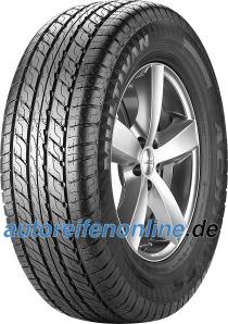 Multivan Achilles pneus