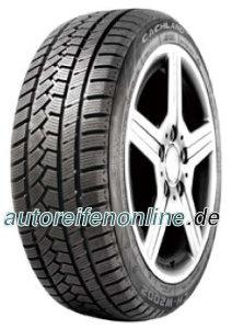 CH-W2002 300A2045 PEUGEOT RCZ Winter tyres