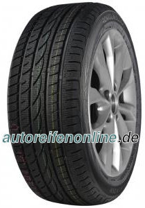 Winter Royal pneus